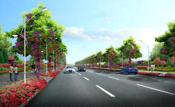 大荔县道路绿化提升工程