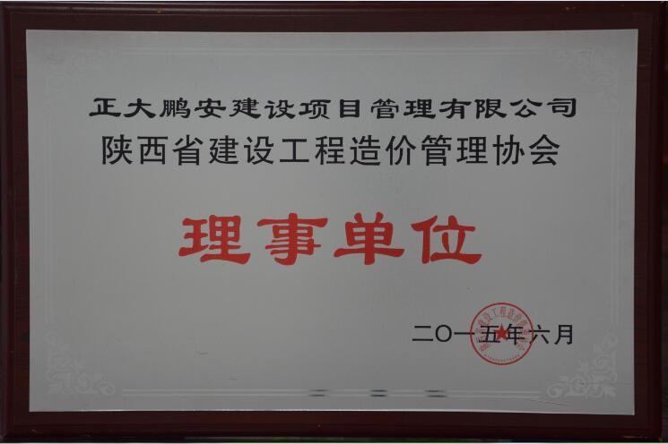 陕西省建设工程造价管理协会常务理事