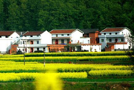 府谷县农村宅基地和集体建设用地确权登记发证工作技术服务项目