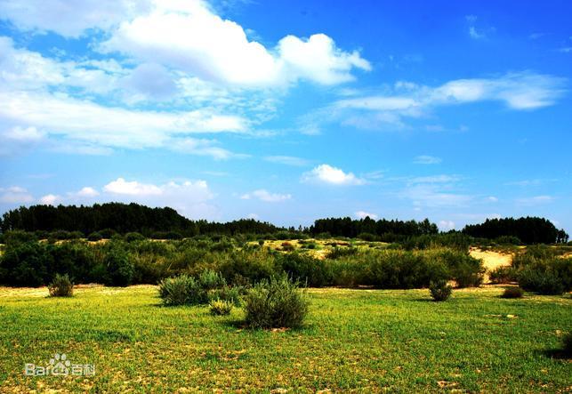 府谷县2020年京津风沙源治理二期工程水利水保建设项目