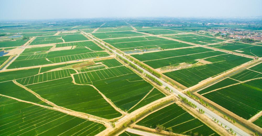 扶风县2014年高标准基本农田建设项目(一标段)扶风天度镇南阳村等6个村高标准基本农田建设项目