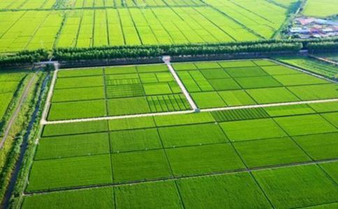 扶风县2016年度高标准农田建设项目(监理)二标段